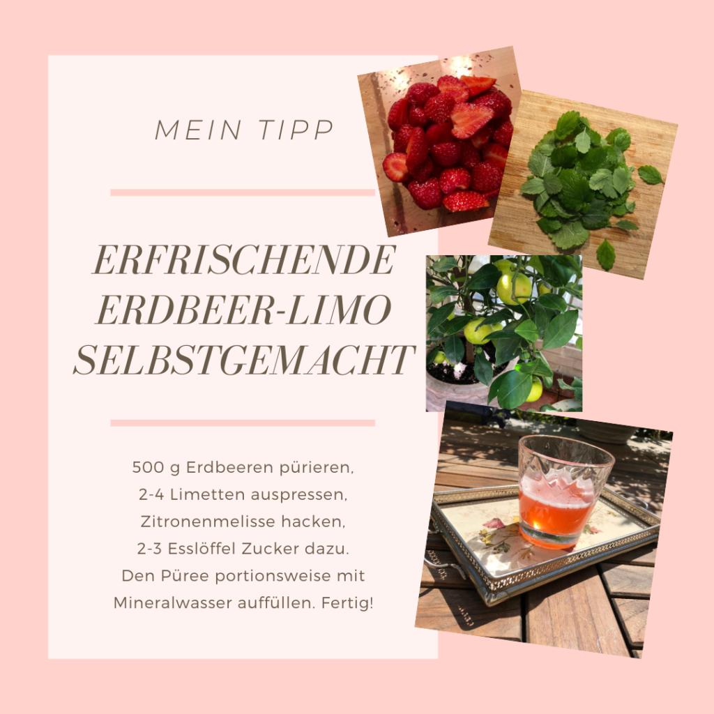 Rezept-Tipp Erdbeerlimonade