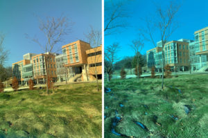 Blick durch 2 organische Solarzellen
